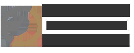 Οικονομοτεχνική Λέσβου – ΟΡΦΑΝΟΣ με πρότυπο WCAG 2.0